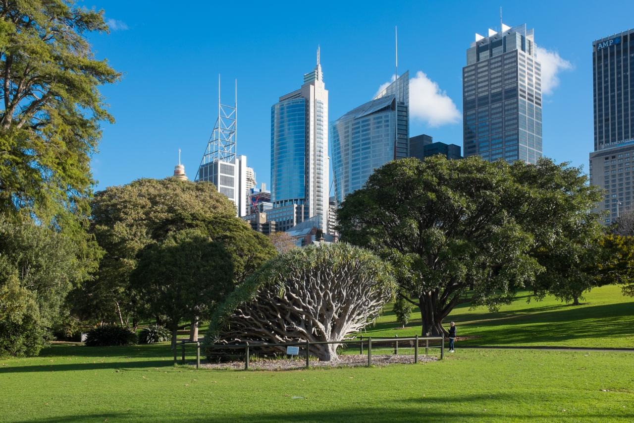 20130621_Sydney-7