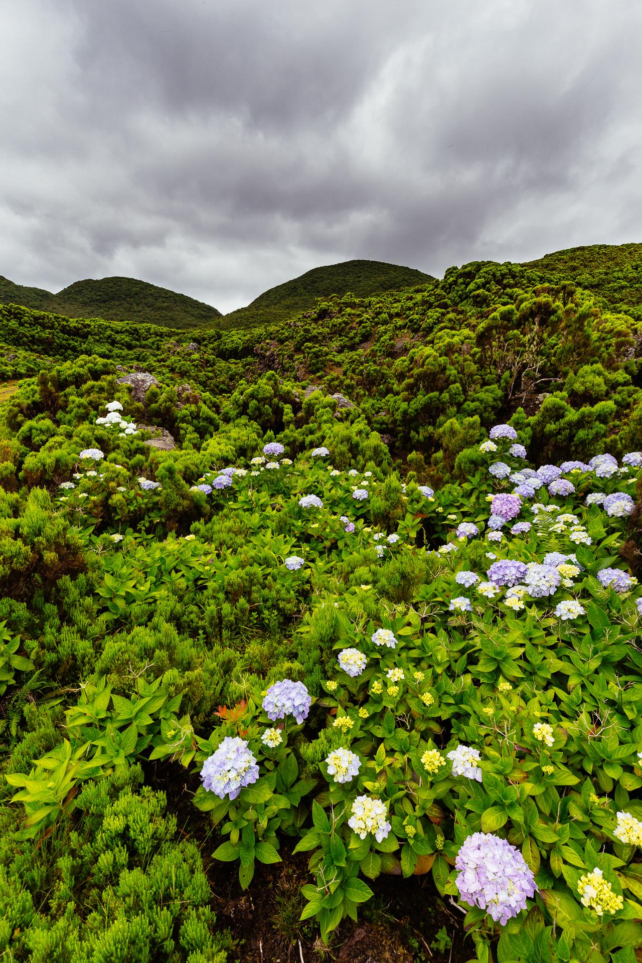 2016_Azores-3
